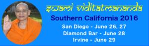 SwamiV 2016 Final Slider v1